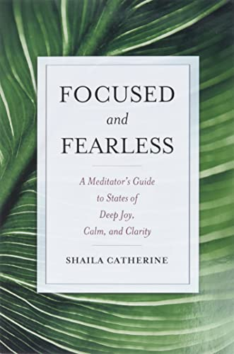 9780861715602: Focused and Fearless: A Meditator's Guide to States of Deep Joy, Calm, and Clarity
