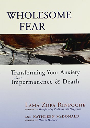 9780861716302: Wholesome Fear: Transforming Your Anxiety About Impermanence and Death