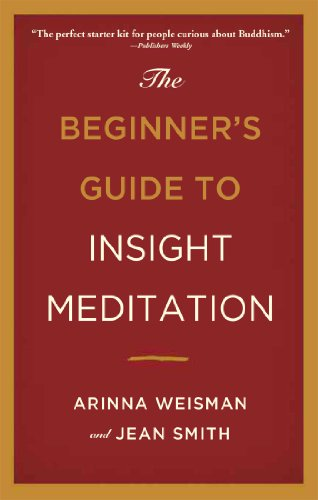 9780861716715: The Beginner's Guide to Insight Meditation