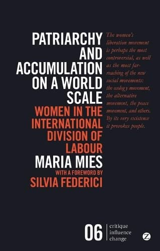 Patriarchy and Accumulation on a World Scale : Women in the International Division of Labour