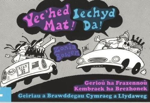9780862430023: Yec'hed Mat / Iechyd Da