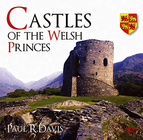 9780862439705: Castles of the Welsh Princes