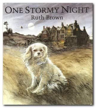9780862644154: One Stormy Night