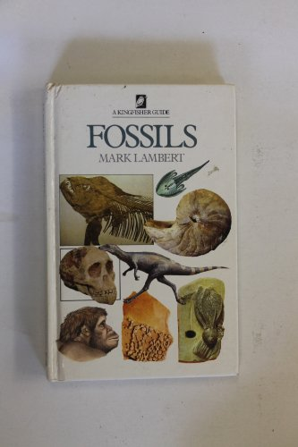 9780862721312: Fossils