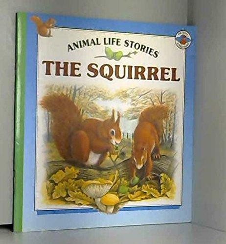 9780862724542: Squirrel
