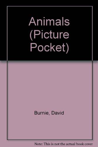 9780862729134: Animals (Picture Pocket)