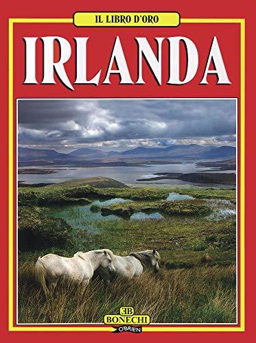 9780862785215: Libro D'Oro Irlanda
