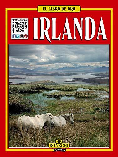 9780862787103: El Libro De Oro - Irlanda