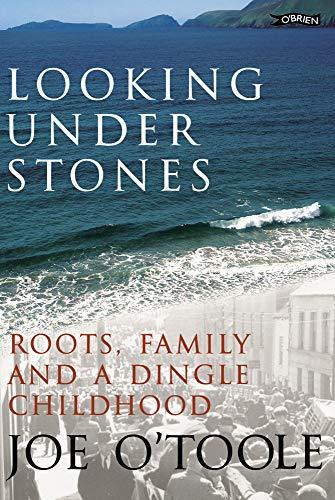 9780862788421: Looking Under Stones