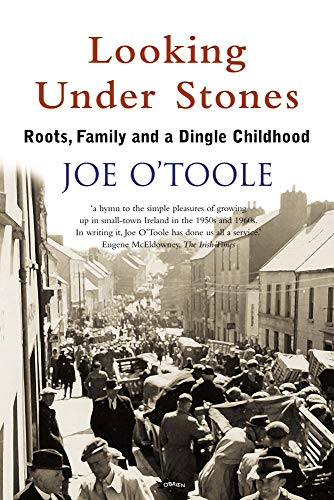 9780862789350: Looking Under Stones: Roots, Family and a Dingle Childhood