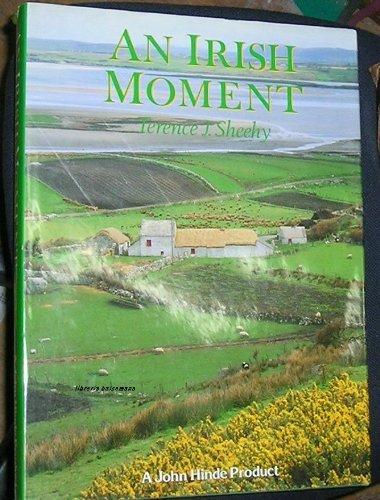9780862837686: Ireland - an Irish Moment