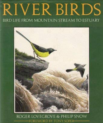 River Birds: Bird Life from Mountain Stream: n/a