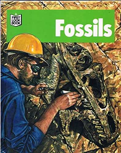 Fossils (A First Look Book) (First Look at): Neil Curtis