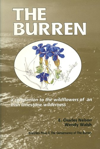 9780863142130: The Burren: Companion to the Wild Flowers of an Irish Limestone Wilderness (Natural history from Boethius Press)