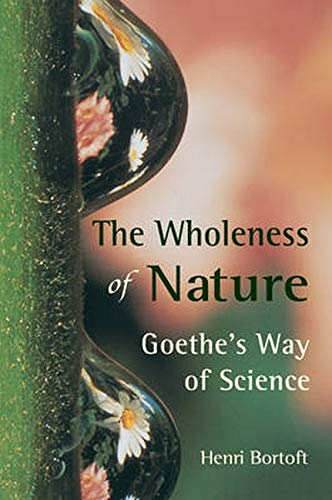 9780863152382: The Wholeness of Nature: Goethe's Way of Science
