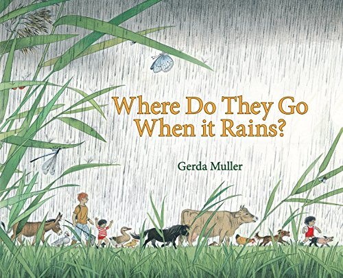 9780863157493: Where Do They Go When it Rains?