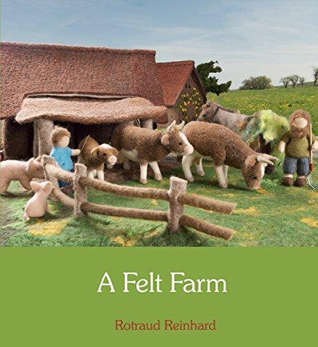 9780863157899: A Felt Farm