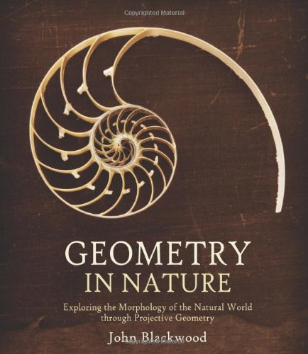 9780863159213: Geometry in Nature: Exploring the Morphology of the Natural World Through Projective Geometry