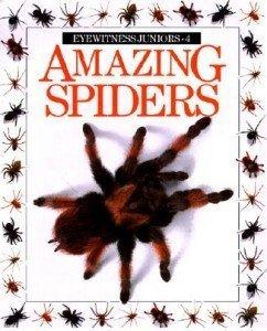 9780863184314: Amazing Spiders (Amazing worlds)