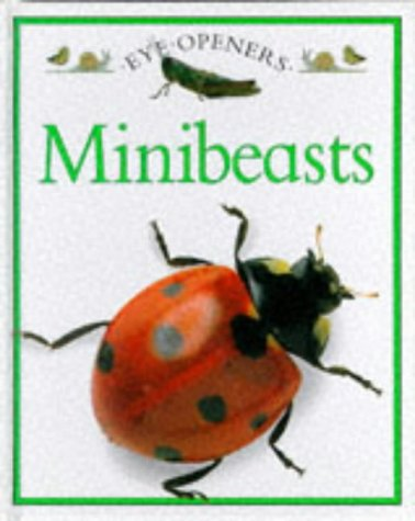 9780863188749: Mini Beasts (Eye Openers)