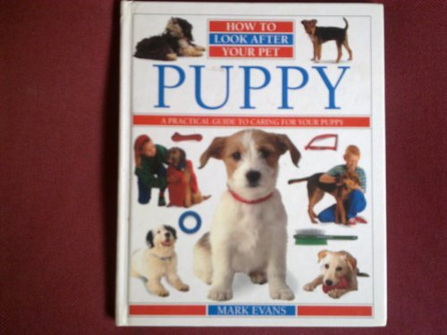 9780863189005: Puppy (How to Look After Your Pet)