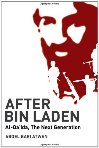 9780863564192: After Bin Laden