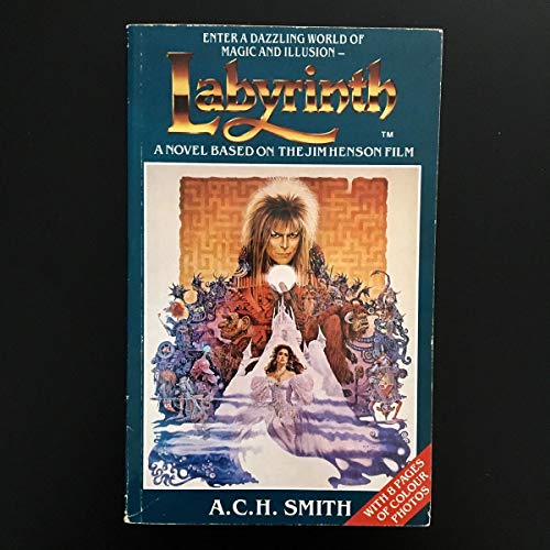 9780863691515: Labyrinth: Novel