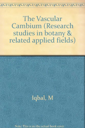 9780863800955: The Vascular Cambium (Research studies in botany & related applied fields)