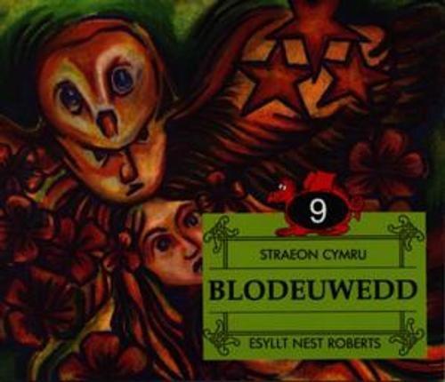 9780863815690: Straeon Cymru:9. Blodeuwedd (Cyfres Straeon Gwerin Cymru) (Welsh Edition)