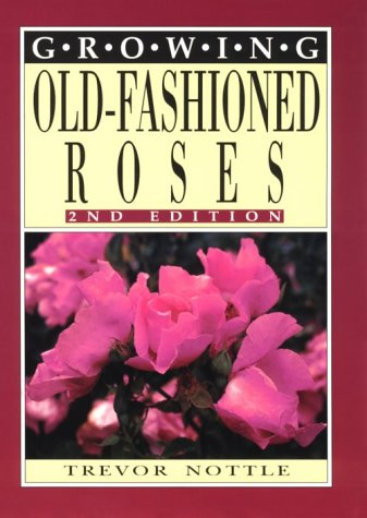 Growing Old-Fashioned Roses.