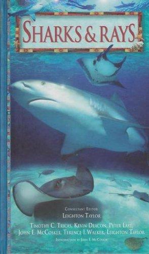 9780864490940: Sharks & Rays