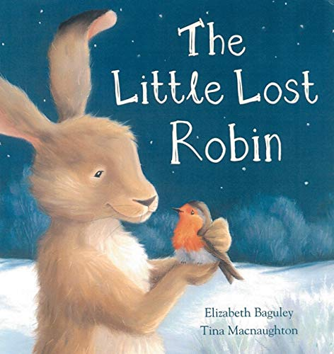 9780864617613: The Little Lost Robin
