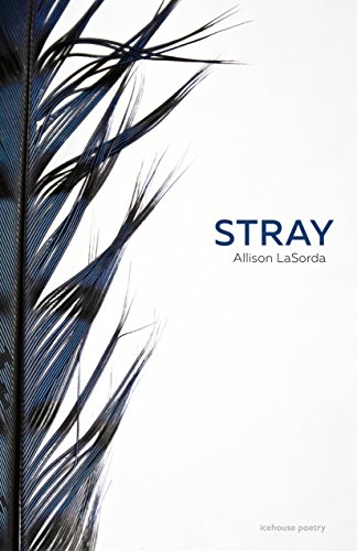 9780864929785: Stray