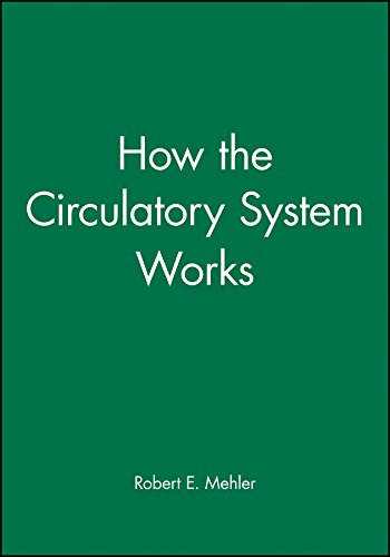 9780865425484: How the Circulatory System Works (How It Works)