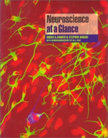 9780865428690: Neuroscience At A Glance