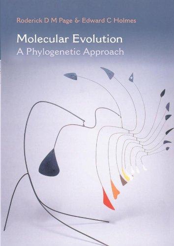 9780865428898: Molecular Evolution: A Phylogenetic Approach