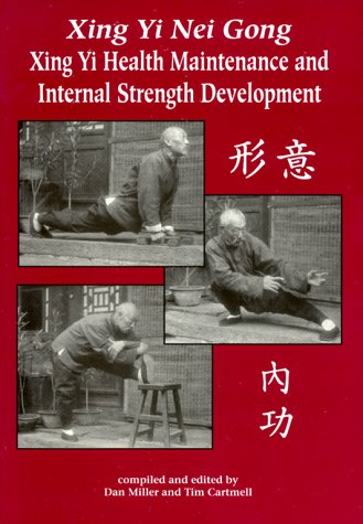 9780865681743: Xing Yi Nei Gong: Xing Yi Health Maintenance and Internal Strength Development