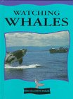 Watching Whales (Read All about Whales): Cooper, Jason