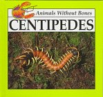 9780866255745: Centipedes (Animals Without Bones Discovery Library)