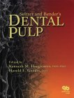 Seltzer and Bender's Dental Pulp: Hargreaves, Kenneth M.