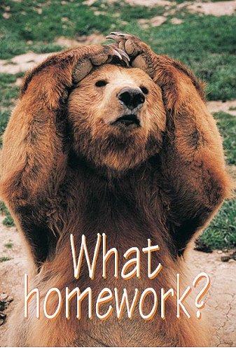 9780867346893: What homework?