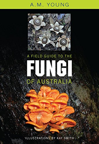 9780868407425: A Field Guide to the Fungi of Australia