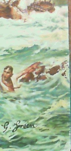9780869780480: The coast of treasure,