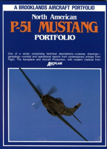North American P-51 Mustang (0869826263) by R.M. Clarke