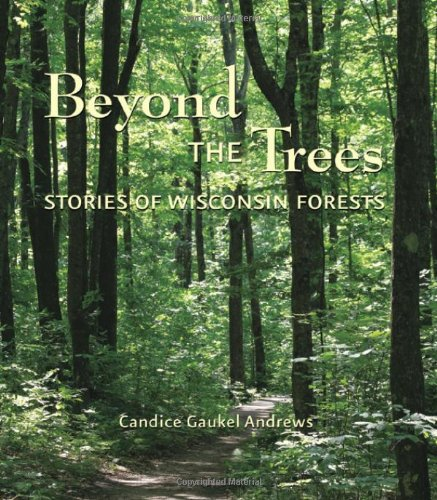 9780870204678: Beyond the Trees: Stories of Wisconsin Forests