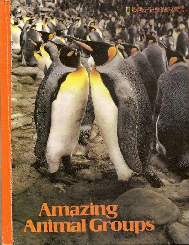 9780870444104: Amazing Animal Groups