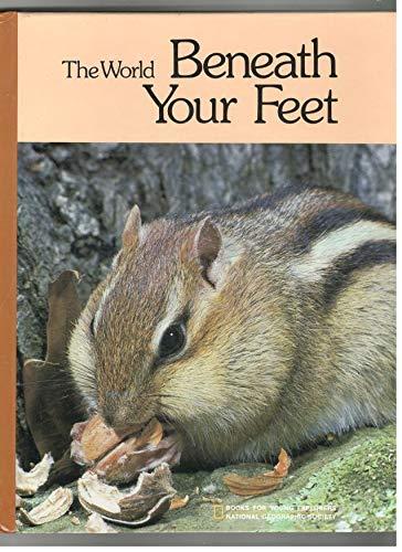 The World Beneath Your Feet: Rinard, Judith E.