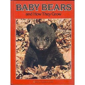 9780870446344: Baby Bears and How They Grow (Books for young explorers)