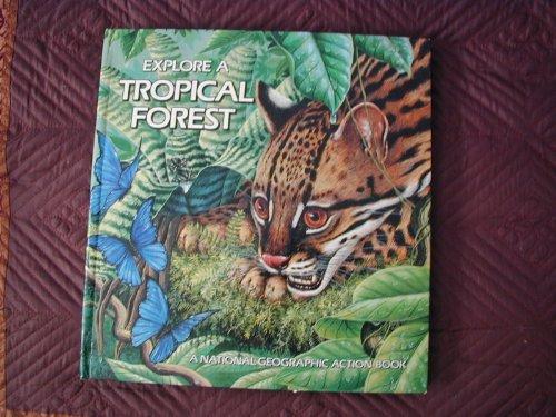 Explore a Tropical Forest, Pop-up Book: Winston, Peggy