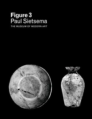 Figure 3: Paul Sietsema: Cornelia H. Butler,